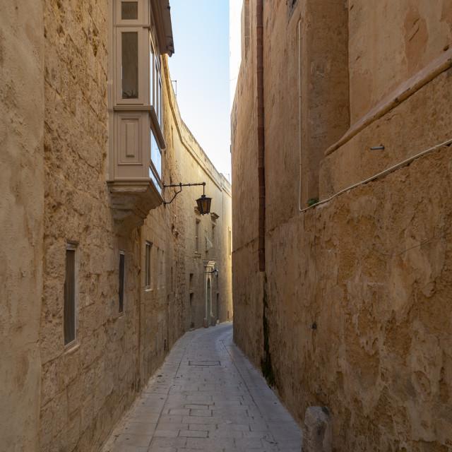 """narrow street in the silent city of Mdina, Malta"" stock image"