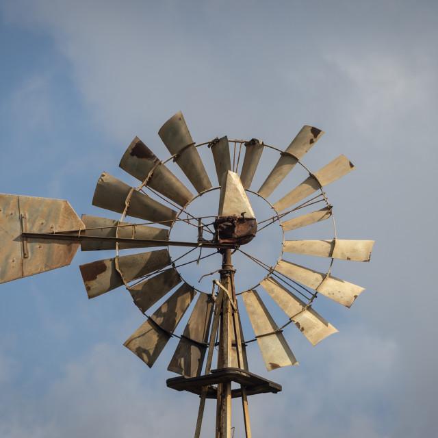 """windvane, windpump."" stock image"