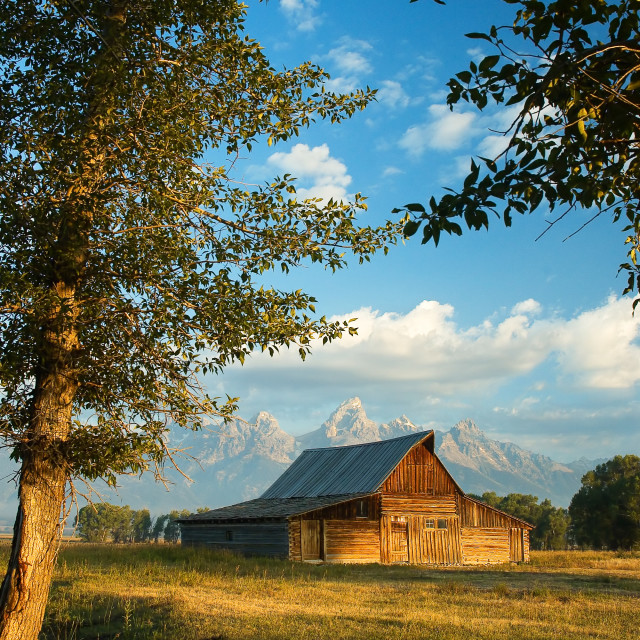 """Barn on Mormon row, Grand Teton National Park"" stock image"
