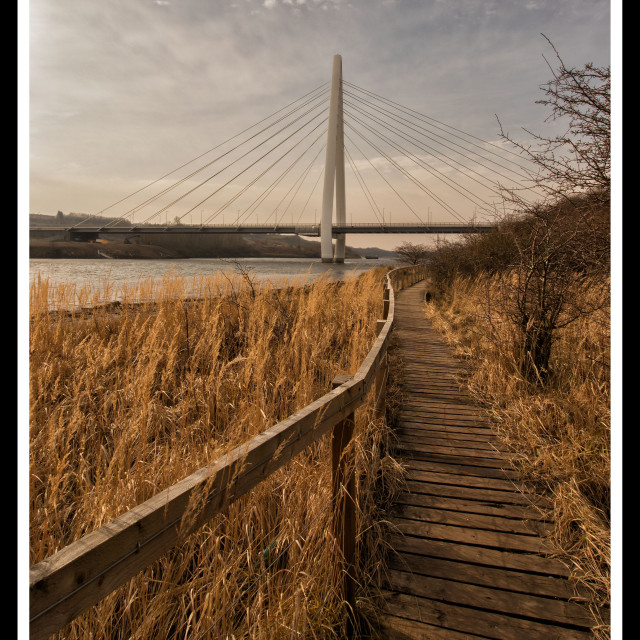 """Northern Spire Bridge"" stock image"