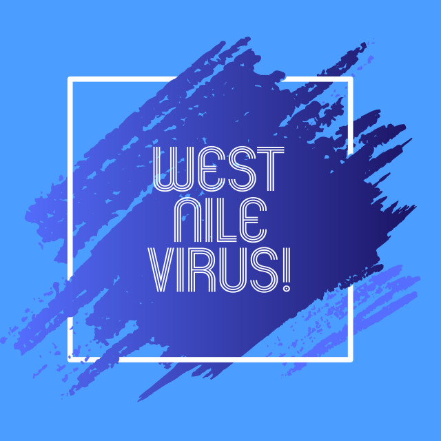 """Word writing text West Nile Virus. Business concept for Viral infection cause..."" stock image"