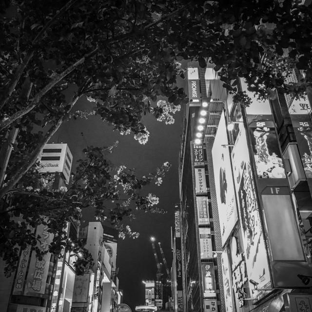 """Monochrome Tokyo"" stock image"