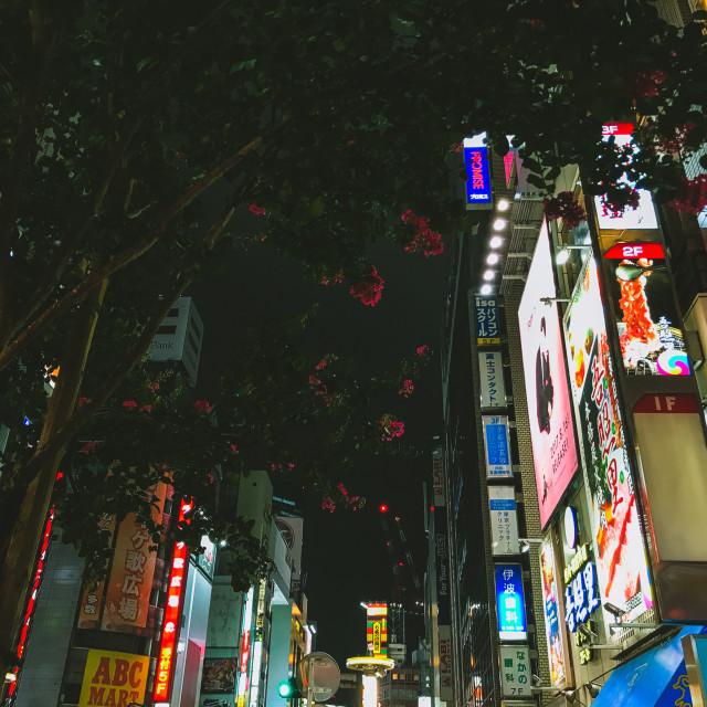 """Tokyo Streets"" stock image"