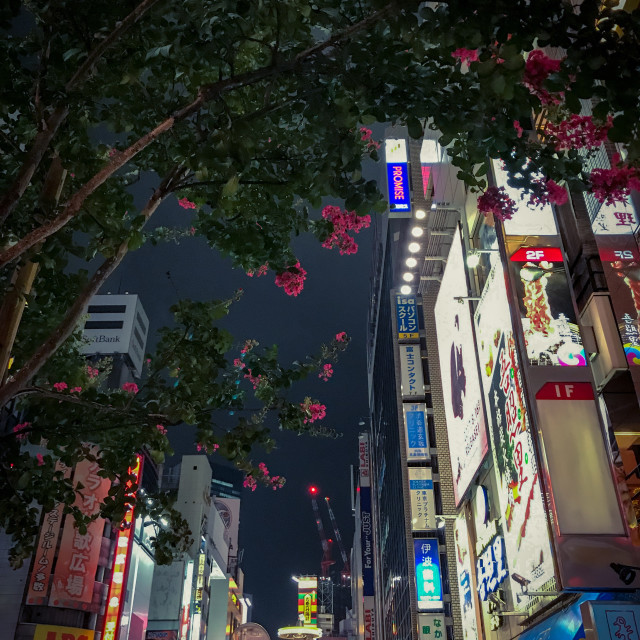 """Tokyo, Streets"" stock image"