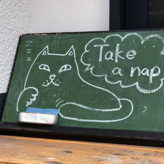 """Cat Nap"" stock image"