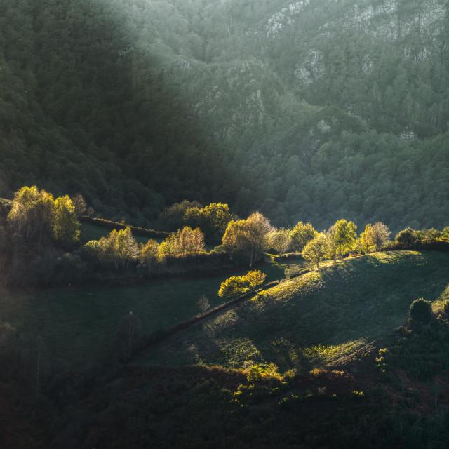 """""""Luces de otoño bañan los bosques y montañas"""" stock image"""