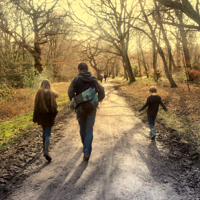 """""""Walking in Epping Forest"""" stock image"""