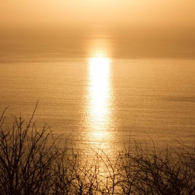 """Morning sun"" stock image"