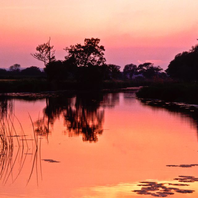 """""""Evening Light on the River Stour"""" stock image"""
