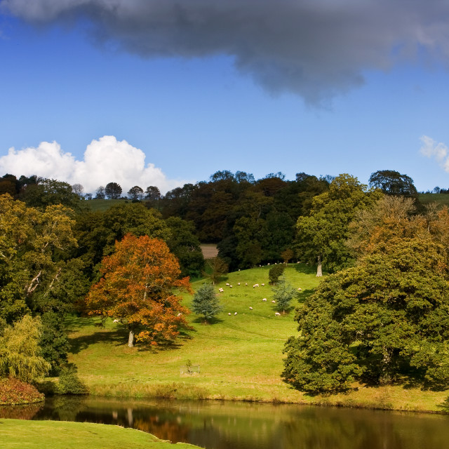 """""""Early Autumn, Minterne Magna"""" stock image"""