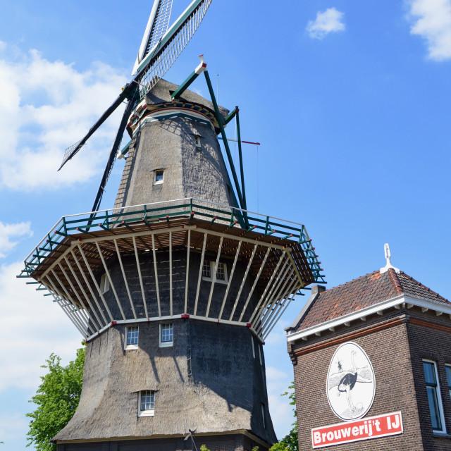 """""""Brouwerij t'Ij"""" stock image"""