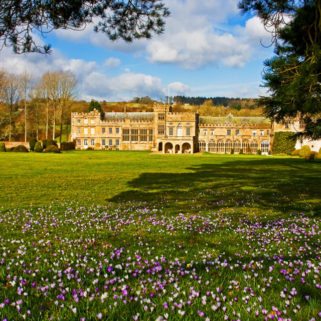"""""""Forde Abbey in Spring"""" stock image"""