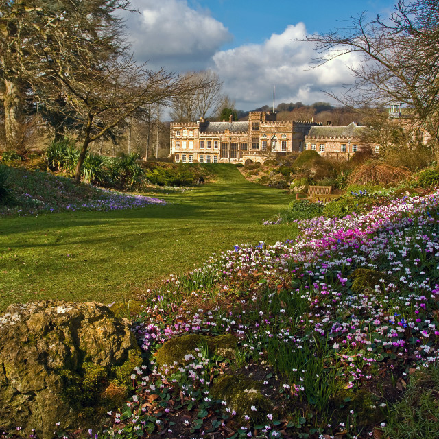 """""""Forde Abbey, Spring Colour"""" stock image"""