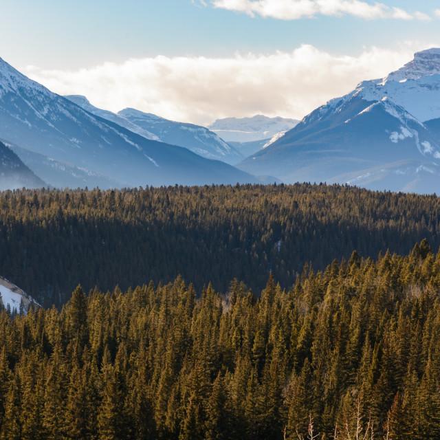 """Canadian Landscape"" stock image"