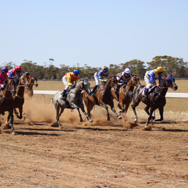 """""""Country Horse Racing"""" stock image"""