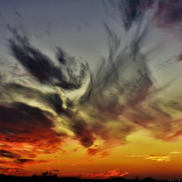 """Firebird series photo seven"" stock image"