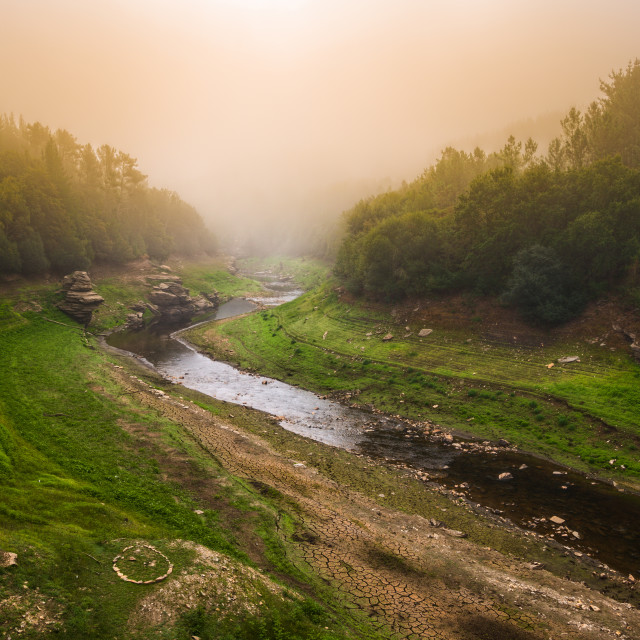 """""""Misty morning on the banks of a river"""" stock image"""