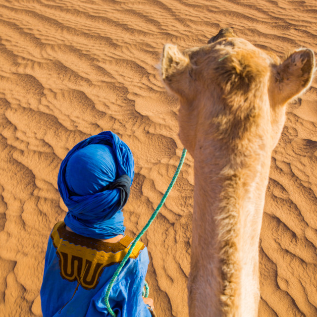 """Berber and a Camel"" stock image"