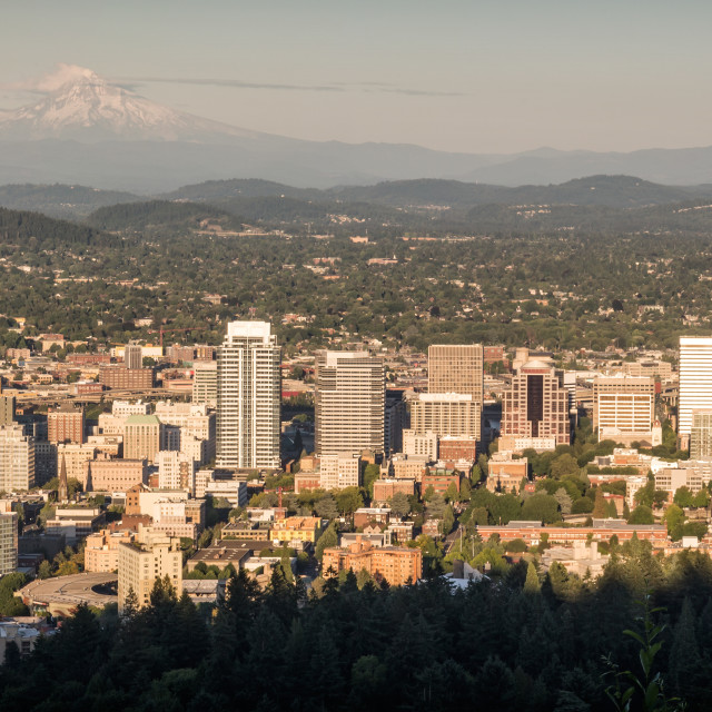 """Evening in Portland"" stock image"