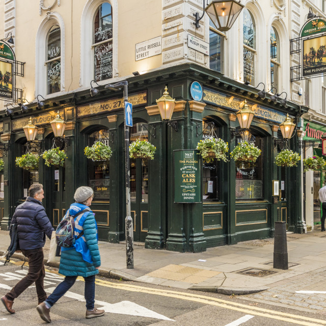 """The Plough pub in Bloomsbury in London, England, United Kingdom, Europe."" stock image"