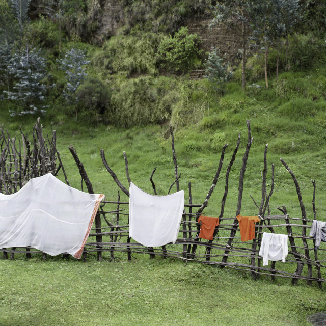 """laundry drying outdoors in Ethiopia"" stock image"