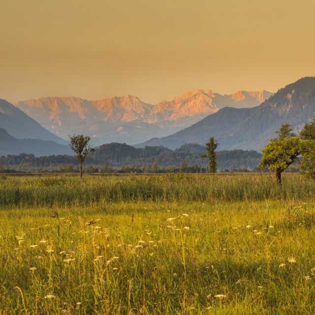 """Murnau Moor, Murnauer Moos with Zugspitze and Wettersteingebirge Mountains at..."" stock image"