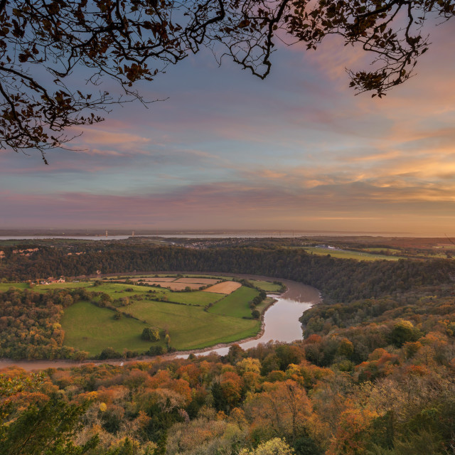 """Upper Wyndcliff, River Wye and Severn Estuary, Wye Valley, Monmouthshire,..."" stock image"