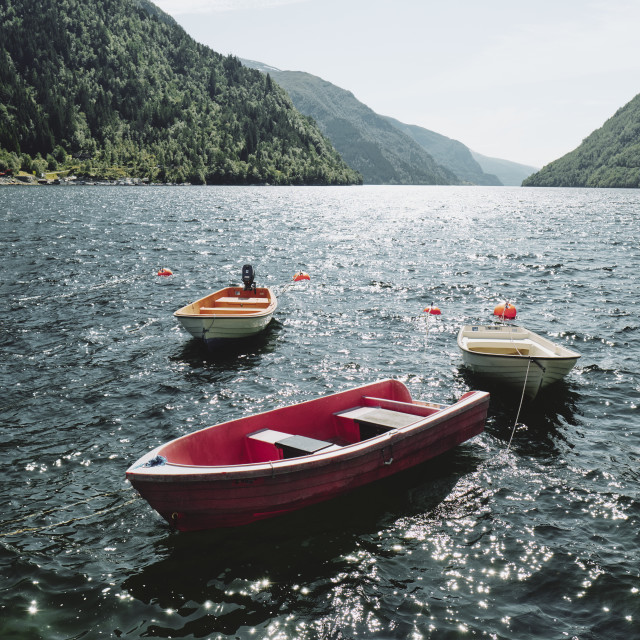 """A summer fjord with moored boats in Norway"" stock image"