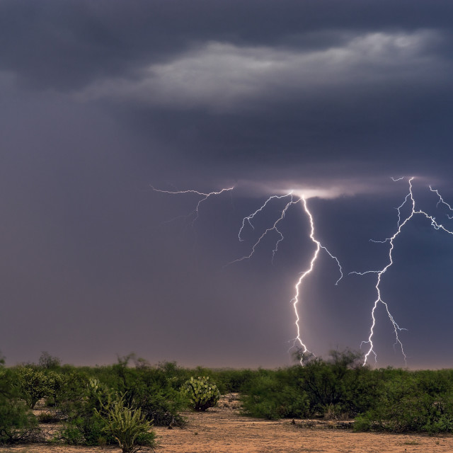 """Lightning bolt strikes ahead of a storm."" stock image"