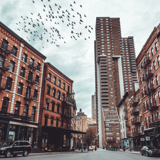 """""""Duane Street with birds fying in Tribeca, NY"""" stock image"""