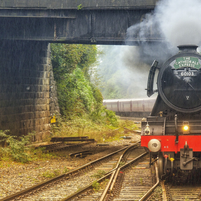 """""""The Cathedrals Express"""" stock image"""