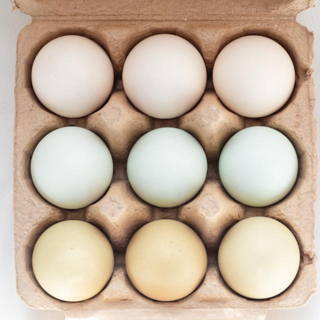 """Plain multicoloured free range eggs in three by three cardboard"" stock image"