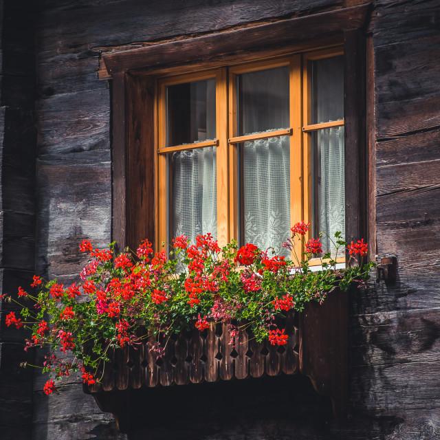 """Window"" stock image"