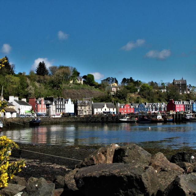 """""""Tranquil day at Tobermory"""" stock image"""