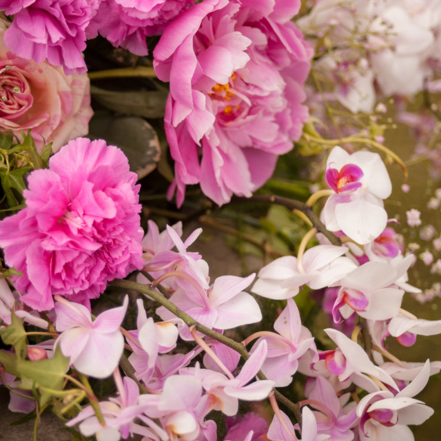 """""""Bouquet of Pink and White Flowers"""" stock image"""