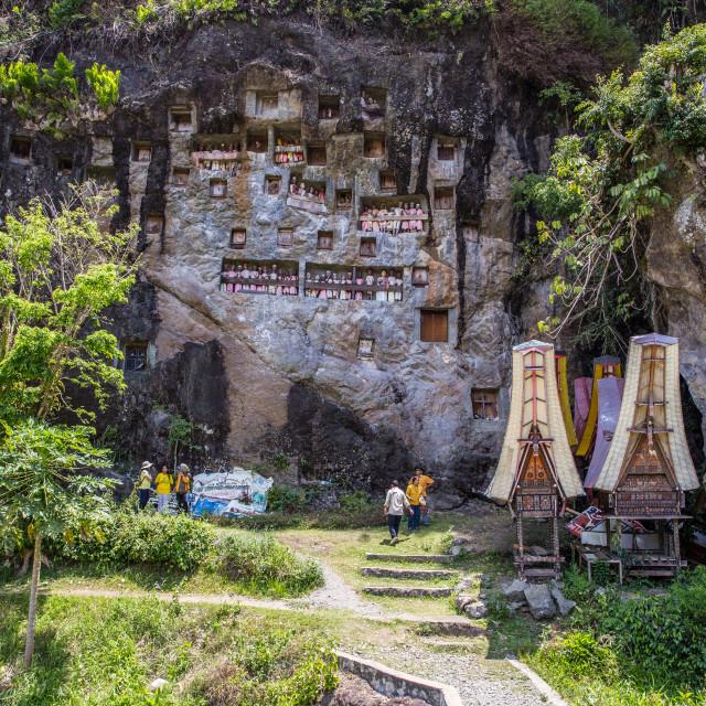 """Hanging graves in Lemo, Tana Toraja, Sulawesi, Indonesia"" stock image"