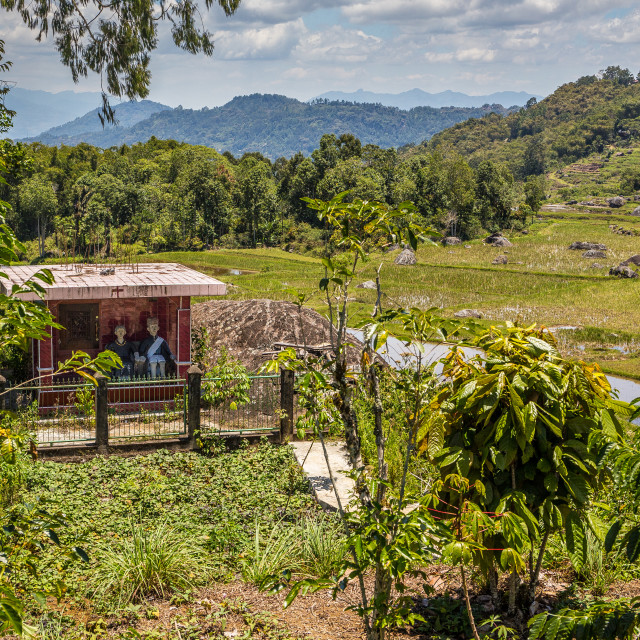 """""""Ancient graves in the countriside in Tana Toraja"""" stock image"""