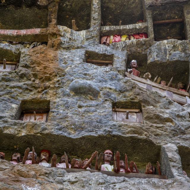 """Ancient hanging graves in Tana Toraja"" stock image"
