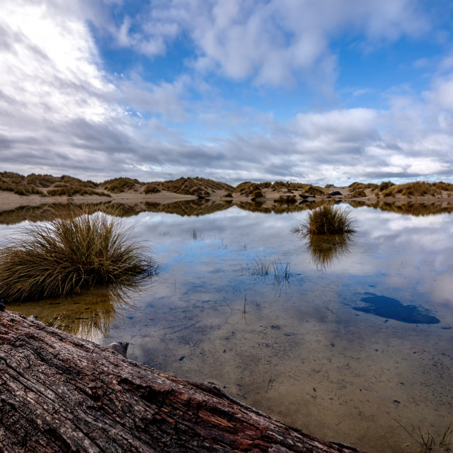 """Reflections in a Rainwater Pond, Sand Dunes, Oregon, USA"" stock image"