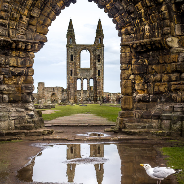 """""""St Andrews abbey"""" stock image"""