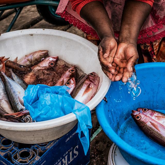 """Women Washing Fish"" stock image"