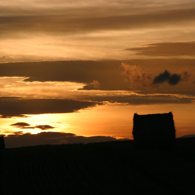"""Late evening sun in Autumn"" stock image"