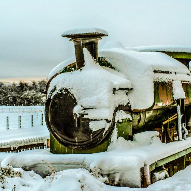 """Polar Train?"" stock image"
