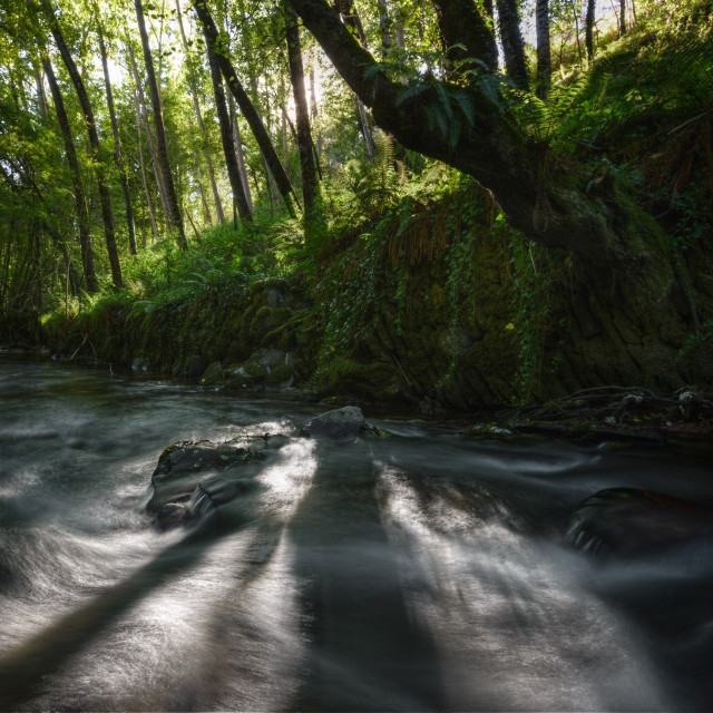 """""""Lights and shadows on a stream between ancient stone walls"""" stock image"""