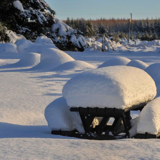 """Snowy Picnic Site"" stock image"