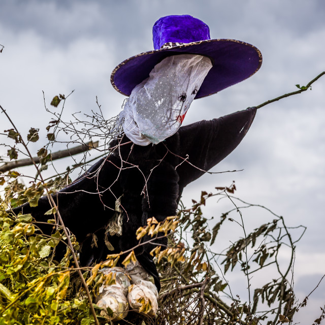 """An effigy of a witch in big hat on the bonfire"" stock image"