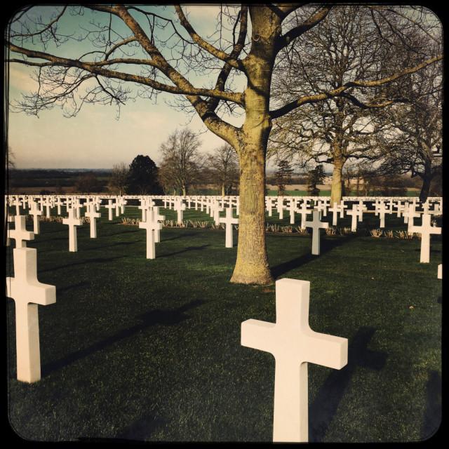"""Cambridge American Cemetery with trees"" stock image"