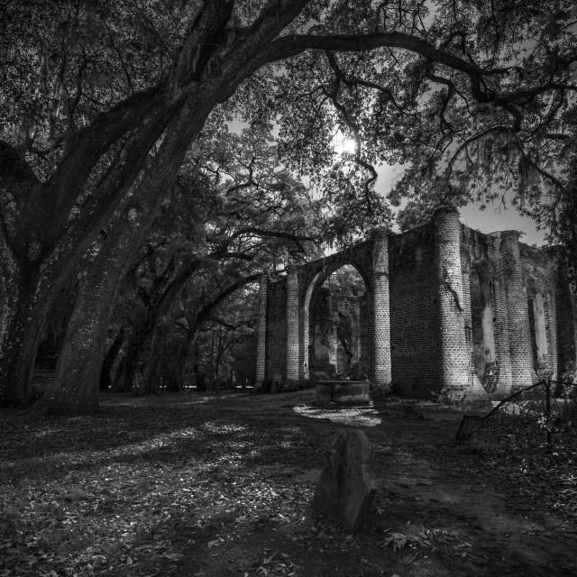 """""""Old Sheldon Church Moonlit Night"""" stock image"""