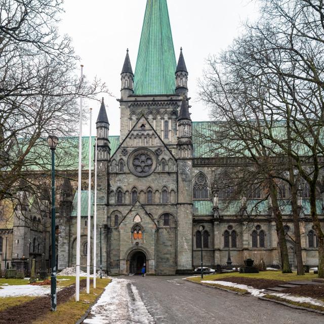 """""""Nidaros Cathedral, Trondheim, Norway"""" stock image"""