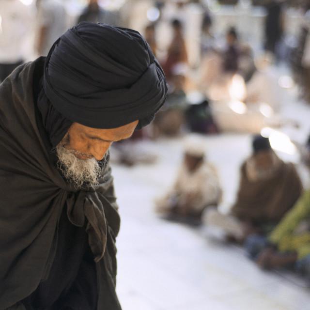 """""""Sufi praying ( India)"""" stock image"""